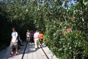 Wandelen op de High Line in New York