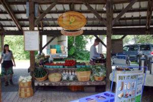 De biologische markt van Ithaca