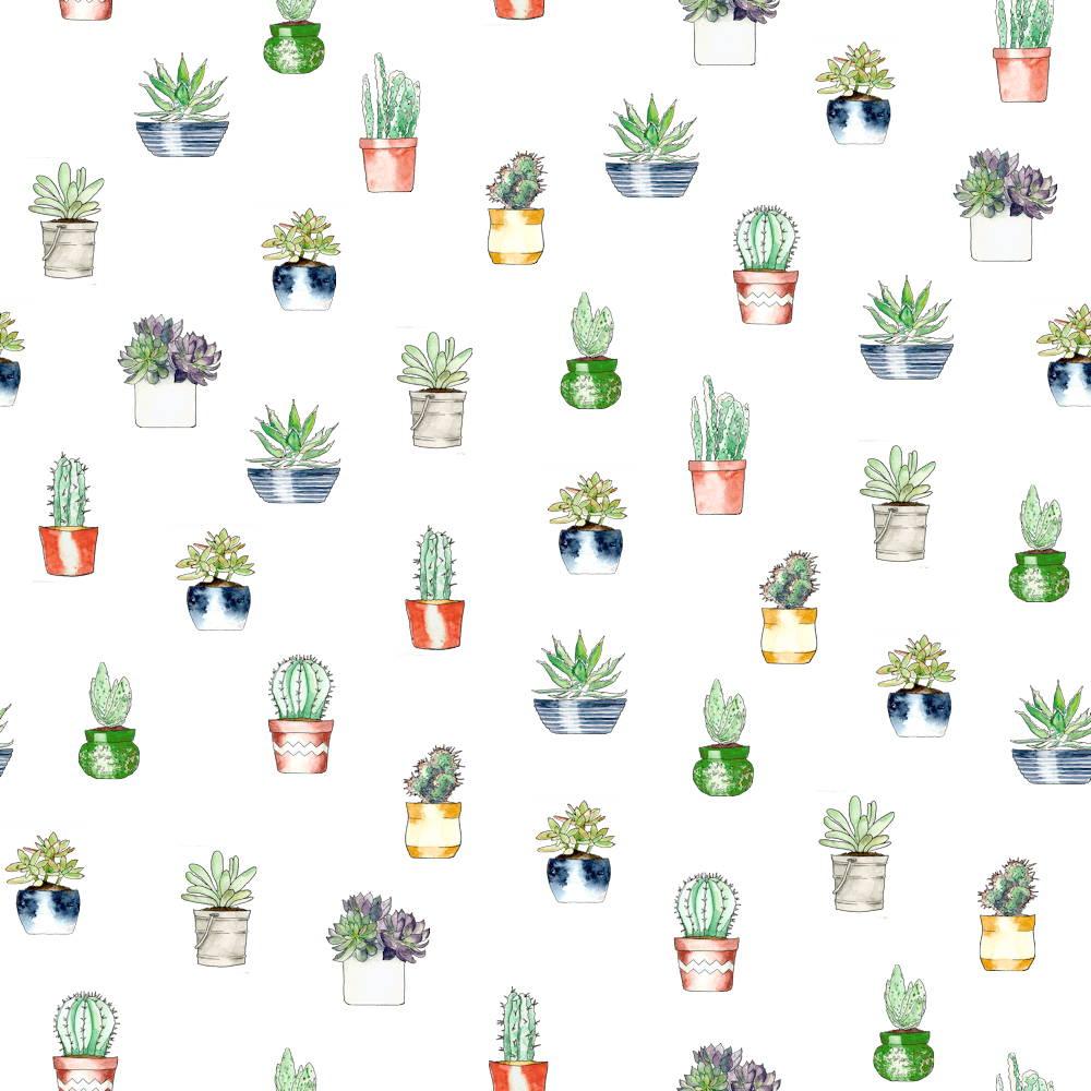 potjes cactussen patroon