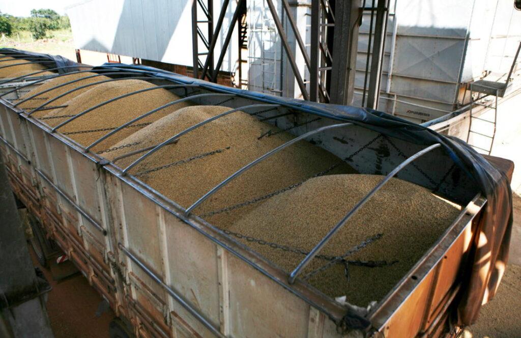 Wagonladingen soja - giftige handel